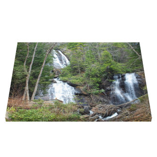 Anna Ruby Falls Georgia Canvas Print
