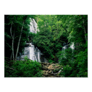 Anna Ruby Falls Posters