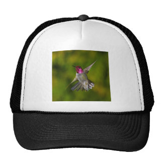 Anna s Hummingbird Trucker Hat