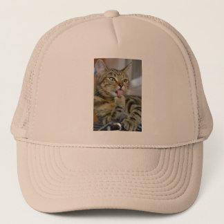 Anna the Cat Grooming Trucker Hat