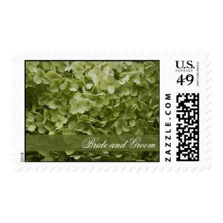 Annabelle Hydrangea Wedding Postage Stamps