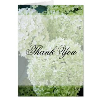 Annabelle Hydrangeas Thank You Greeting Card