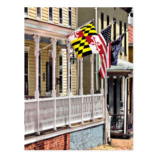 Annapolis MD - Flags Along East Street Postcard