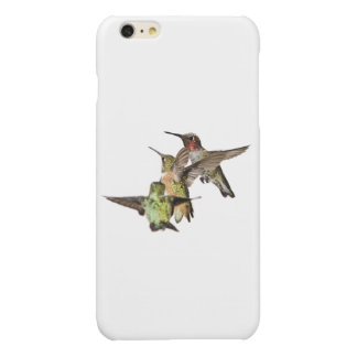 Anna's and Allen's Hummingbirds iPhone 6 Plus case Glossy iPhone 6 Plus Case
