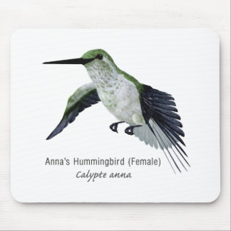 Annas' Female Hummingbird with Name Mouse Pad