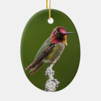 Anna's Hummingbird and Fuschia Ceramic Ornament