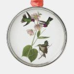 Anna's Hummingbird by Audubon Metal Ornament