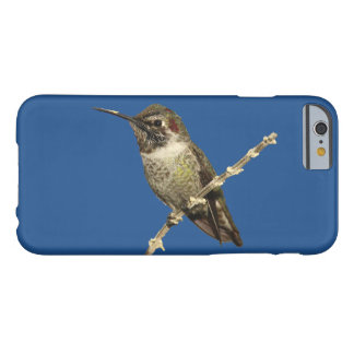 Anna's Hummingbird Barely There iPhone 6 Case