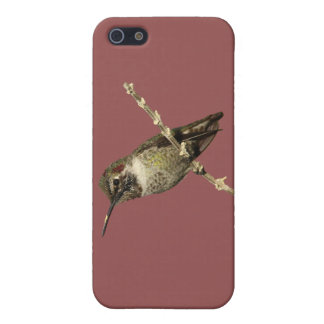 Anna's Hummingbird Cover For iPhone SE/5/5s