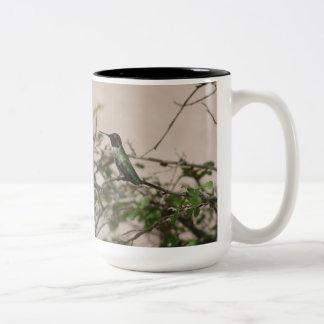 Anna's Hummingbird in Tucson, AZ Two-Tone Coffee Mug