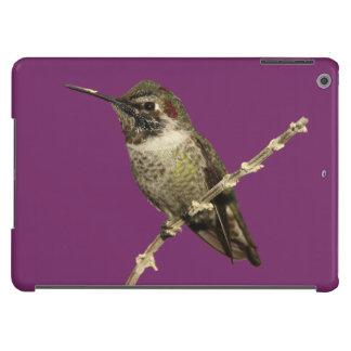Anna's Hummingbird iPad Air Cover