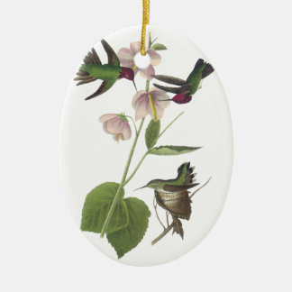Anna's Hummingbird, James Audubon Ceramic Ornament