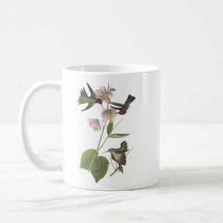 Anna's Hummingbird, James Audubon Coffee Mug
