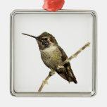 Anna's Hummingbird Metal Ornament