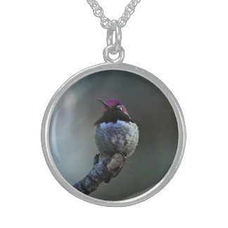 Anna's Hummingbird Sterling Silver Necklace