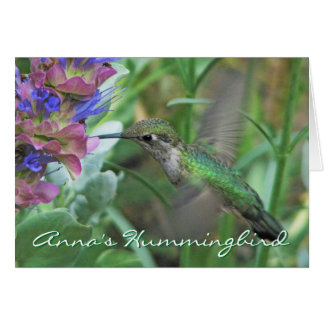 Anna's Hummingbird Notecard Stationery Note Card