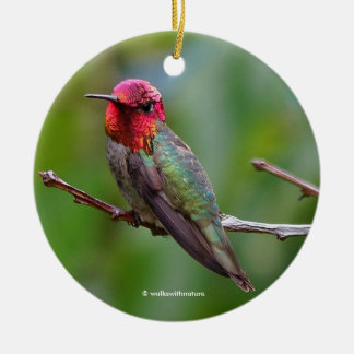 Anna's Hummingbird: This King Wears a Pink Crown Ceramic Ornament