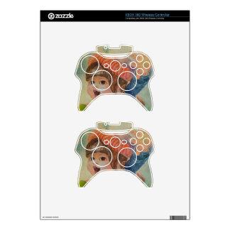 Anna's Robin 3 Xbox 360 Controller Skin