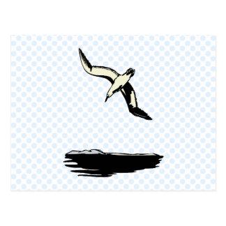 Annie Albatross Post Card