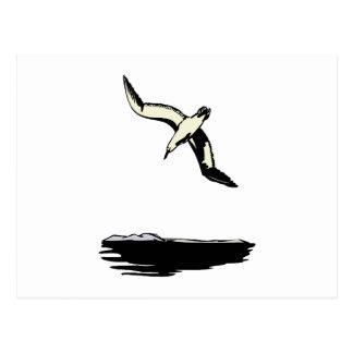 Annie Albatross Postcards