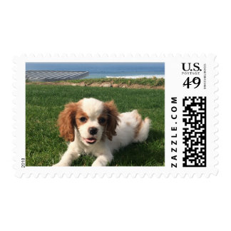 Annie, la reina timbres postales