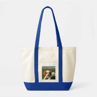Annie the Queen Tote Me Bag