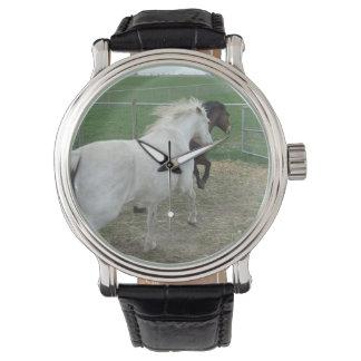 Annie y reloj de Morgana