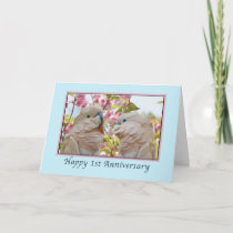 Anniversary, 1st,  Parrots and Crab Apple Blossoms Card