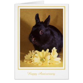 Anniversary - Bunny and Daisies Greeting Card