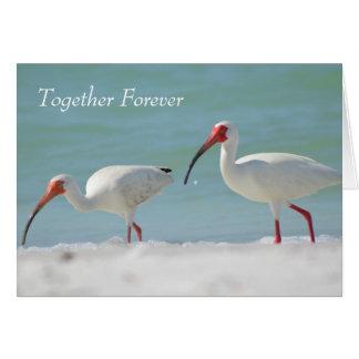 Anniversary Card, Florida Style