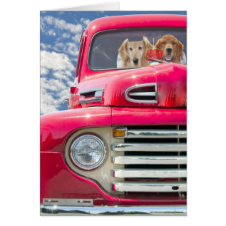Anniversary-golden Retrievers In Vintage Truck Card at Zazzle