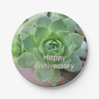 Anniversary Succulent Paper Plate