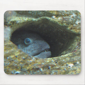 Annoyed fish mouse pad