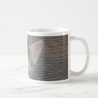 Annoyed Kitty Coffee Mug