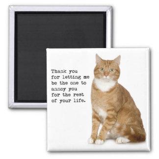 Annoying Cat Magnet