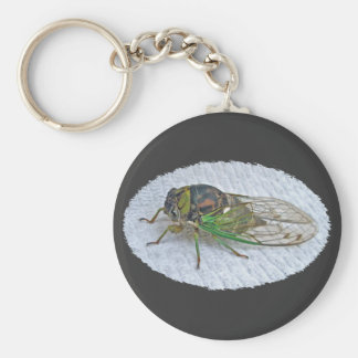Annual Cicada Coordinating Items Keychain