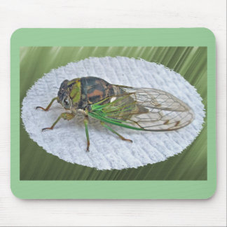 Annual Cicada Coordinating Items Mouse Pad
