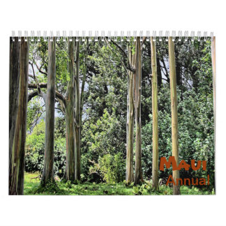 Annual Maui Hawaii Wall Calendar