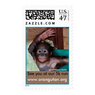 Annual Orangutan Charity Fun Run Postage