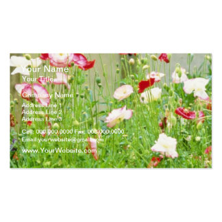 Annual Poppies flowers Double-Sided Standard Business Cards (Pack Of 100)