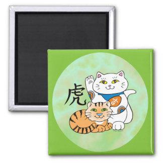 Año afortunado del gato del tigre imán cuadrado