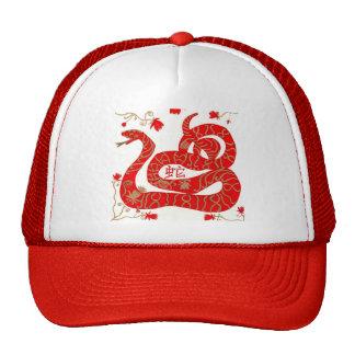 Año chino de la serpiente gorros bordados