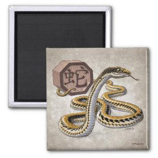 Año chino del zodiaco del arte de la serpiente imán cuadrado