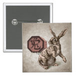 Año de la astrología china del zodiaco del conejo pins