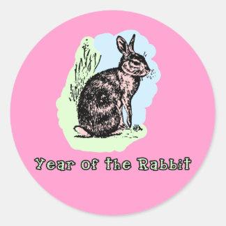 Año de la camiseta en colores pastel del conejo, pegatina redonda