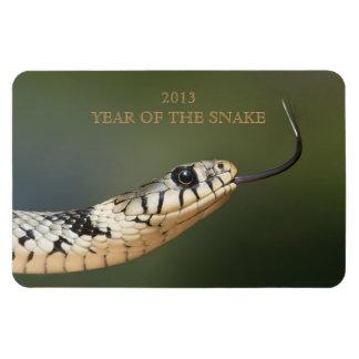 Año de la foto de la serpiente del personalizado d rectangle magnet
