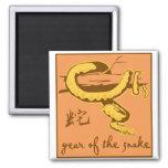 Año de la serpiente iman