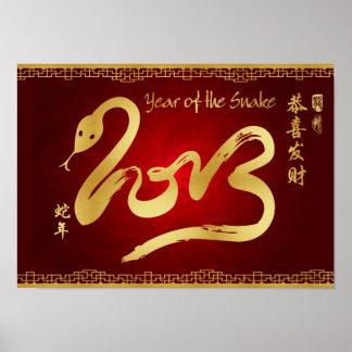 Año de la voluta de la serpiente 2013 poster