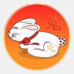 Año de los pegatinas redondos del conejo pegatina redonda