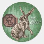 Año del arte chino del zodiaco del conejo pegatina redonda